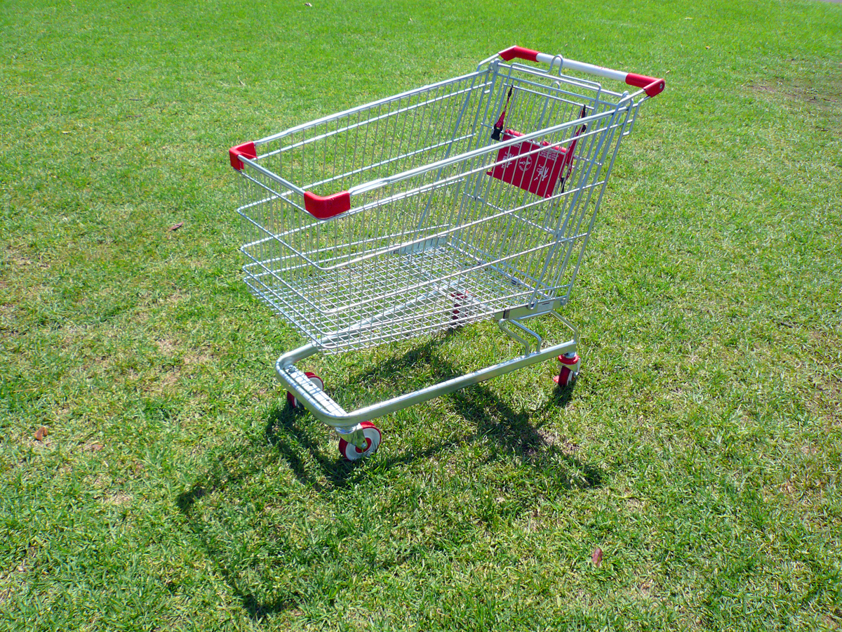 shoppingtrolley3