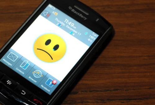 blackberry 499x341