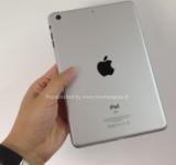 iPad Mini   Is This It?