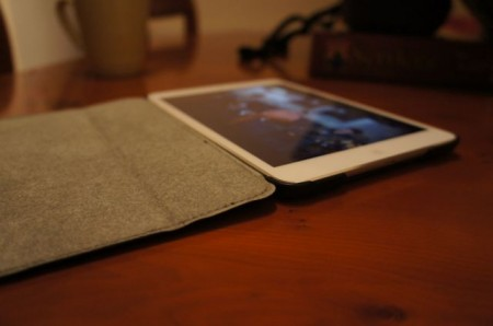 iPad Mini Case Comparison