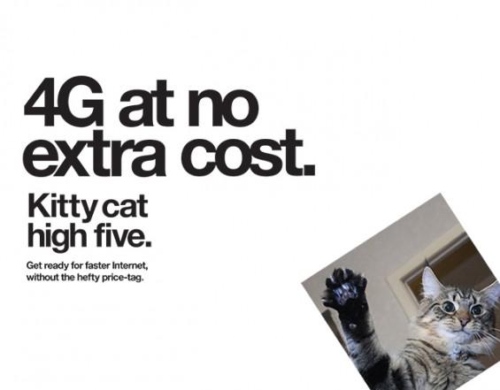 640x500 KittyCat
