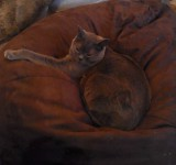 George on a Beanbag
