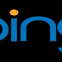 wpid-bing-logo.png