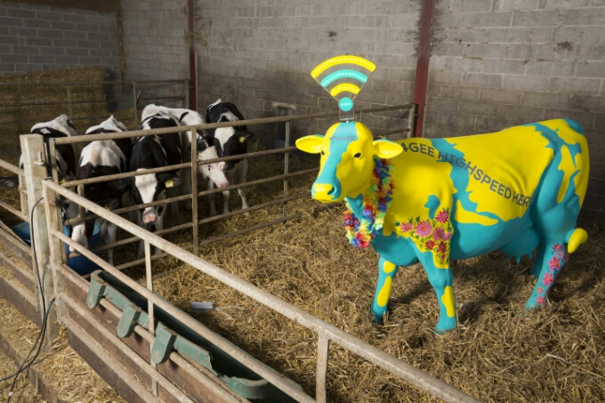 Connect to EE 4G Moo Fi at Glastonbury