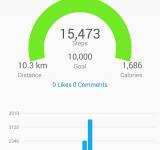 Garmin Vivofit Fitness Tracker   Review