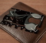 Want a Ninja in your wallet? Check this out