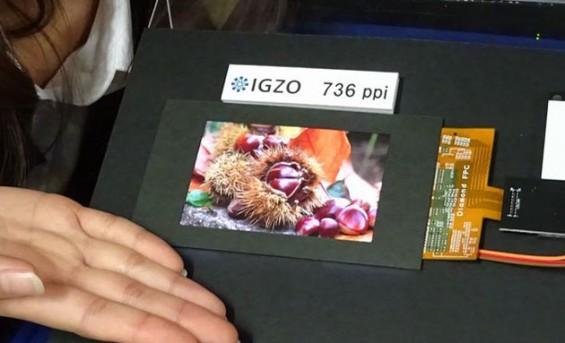 IMG 0007 0.JPG