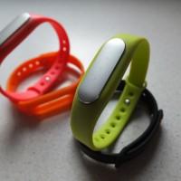 Xiaomi Mi Band Pic2