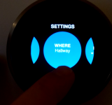 Nest Review