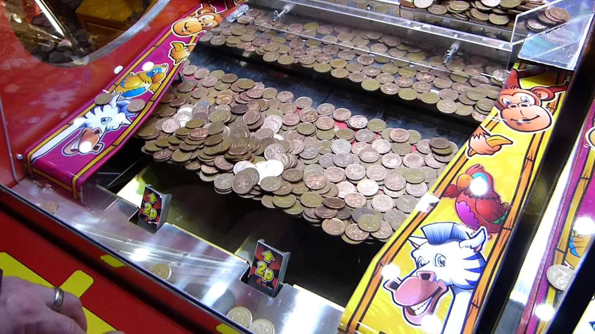 Stake sports betting