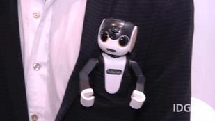 Cute Smartphone   RoBoHoN