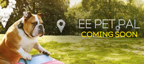 Track your pet with EE