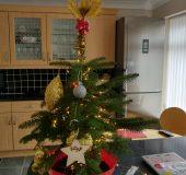 Festive Feature   LOPOO Christmas Decoration Kit