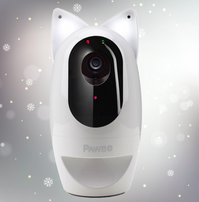 Going away for Christmas? Pawbo   The pet camera and more
