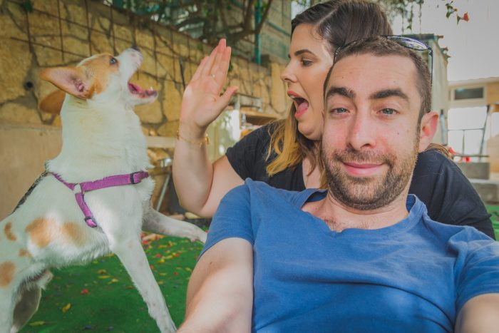 Playful and excited dog interrupt to couple to be photographed