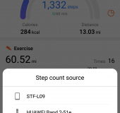 Huawei Band 2 Pro Fitness Tracker   Review