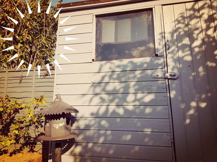 Random strange shed project. Day 4